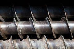 Coclee vuote del gambo per perforare Fotografia Stock Libera da Diritti