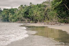 Cocles海滩 库存照片