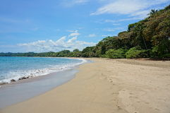 Cocles strand på den karibiska kusten av Costa Rica Royaltyfri Fotografi