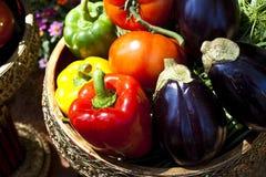 coclorful λαχανικό Στοκ Φωτογραφίες