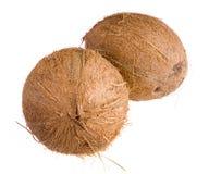 Cocnut closeup on white background. Walnut closeup with path on white background Stock Photo