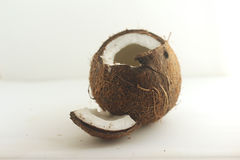 Cocnut. Isolated against light background Royalty Free Stock Images