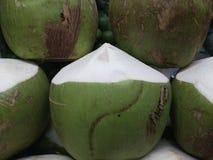 coco Fotos de Stock