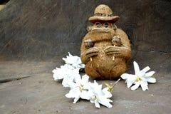 Coco-Affe mit Rumbaschüttelen-apparat maracas Stockfotografie