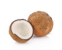 Coco aislado en el fondo blanco Imagen de archivo libre de regalías