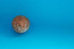 Coco aislado en fondo azul Trayectoria de recortes Fotografía de archivo libre de regalías