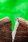 Coco apenas tajado: mitades del coco en fondo verde Imágenes de archivo libres de regalías