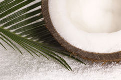 Coco bath. Coconut, towel anh palm leaf. exotic scene Royalty Free Stock Photos