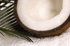 Coco bath. Coconut, towel anh palm leaf. exotic scene Stock Images
