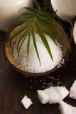 Coco bath. coconut with sea salt stock photography