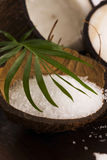 Coco bath. coconut with sea salt stock photo