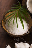 Coco bath. coconut with sea salt Stock Image