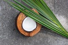 Coco, cáscara del coco, hoja del coco, esquina delantera fotos de archivo