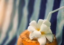 Coco com flores do Plumeria e um tubo bebendo que encontra-se em uma toalha listrada em um recurso tropical fotos de stock