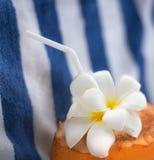 Coco com flores do Plumeria e um tubo bebendo que encontra-se em uma toalha listrada em um recurso tropical fotografia de stock royalty free