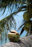 Coco con la paja de beber Foto de archivo