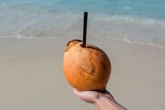 Coco con la paja de beber en una playa Foto de archivo libre de regalías
