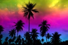 coco de la silueta en cielo colorido del punto culminante de la granja del jardín Imágenes de archivo libres de regalías