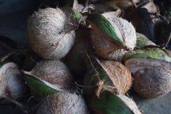 Coco delicioso para la venta imágenes de archivo libres de regalías