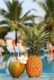 Coco e abacaxi Imagens de Stock Royalty Free
