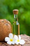 Coco e petróleo de coco Fotografia de Stock Royalty Free