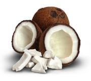 Coco em um fundo branco Fotos de Stock Royalty Free
