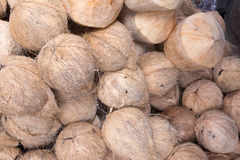 Coco en el mercado Imagenes de archivo