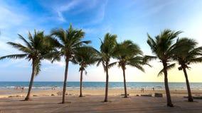 Coco en la playa Imagenes de archivo