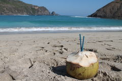 Coco en la playa Imagen de archivo