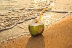 Coco en la playa, en las ondas Puesta del sol Imágenes de archivo libres de regalías