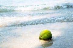 Coco en la playa tropical Imágenes de archivo libres de regalías