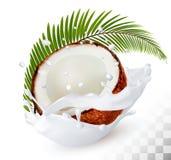 Coco en un chapoteo de la leche en un fondo transparente ilustración del vector