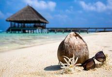 Coco, flores y gafas de sol en la playa Foto de archivo