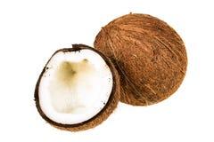 Coco fresco en fondo aislado blanco Imagenes de archivo