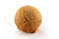 Coco isolado no branco Fotografia de Stock