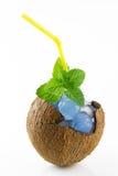 Coco llenado de mojito con hielo Imagenes de archivo