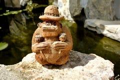 Coco małpa z rumba potrząsaczami maraskino obraz royalty free