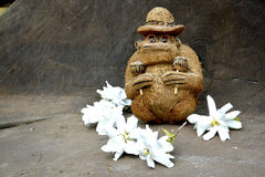 Coco małpa z rumba potrząsaczami maraskino fotografia stock