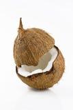 Coco maduro y apetitoso Fotos de archivo