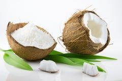 Coco maduro y apetitoso Foto de archivo