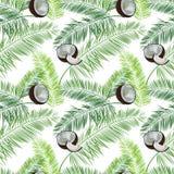 Coco, modelo inconsútil del vector de las hojas de palma en el fondo blanco stock de ilustración