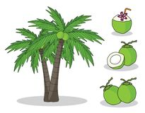 Coco na árvore com fundo branco desenho isolado da mão da garatuja ilustração do vetor