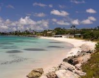coco na plaży Zdjęcie Stock