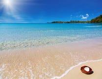 Coco na praia fotografia de stock royalty free