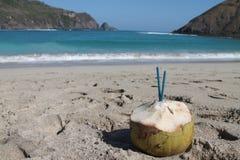 Coco na praia Imagem de Stock