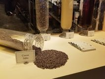 Coco Nibs. Different types of coco nibs from the Hershey Museum stock photo
