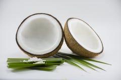 Coco no fundo branco para o cozimento ou a matéria prima Imagens de Stock Royalty Free