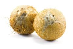 Coco no fundo ou alimento do fundo ou leite ou matéria prima branca de coco Foto de Stock