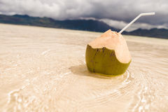 Coco nut cocktail in the shallow beach water Stock Images