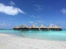 Maledives. Coco palm dhuni colhu island Royalty Free Stock Photography